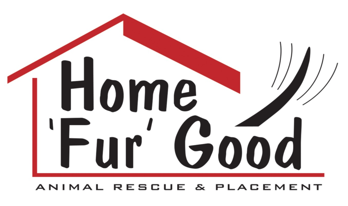 HOME FUR GOOD